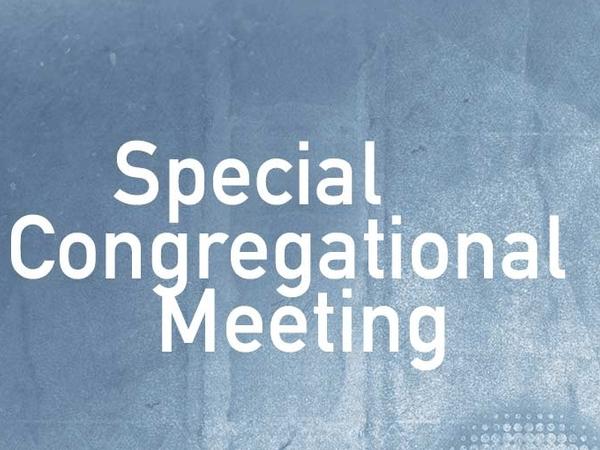 Congregational Meeting- Budget & Vision